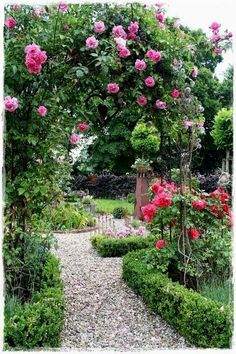 Judy's Cottage Garden: How to Design a Cottage Garden...a mass of roses on an arbor could provide summertime privacy from the neighbors without looking so obvious as a privacy structure #GardeningDesign
