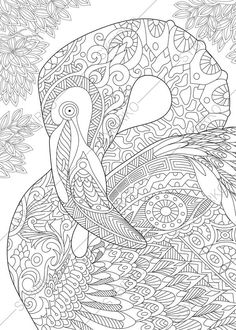 Flamingo Adult Coloring Book Page. Zentangle Doodle Coloring