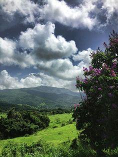 El Yunque desde Nauguado, PR por José E Maldonado
