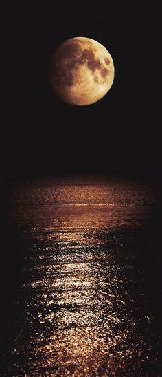 ✯ Moonshine
