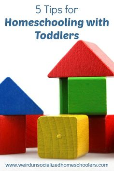 Schooling your children at home can be tricky, but homeschooling with toddlers can be even trickier. Try these 5 tips to make it work. Creative Activities For Kids, Hands On Activities, Toddler Activities, Healthy Pregnancy Tips, Sibling Relationships, Sensory Boxes, Toddler Snacks, Home Schooling, Homeschool Curriculum