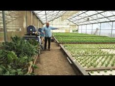 So You Wanna Be and Aquaponic Farmer by Austin Aquaponics - YouTube