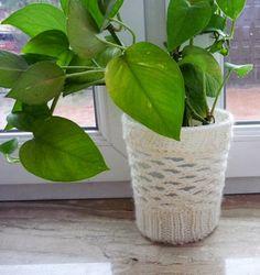 Plant Pot Cozy Knit Plant Cover Ecru Plant Pot by IskaCreations