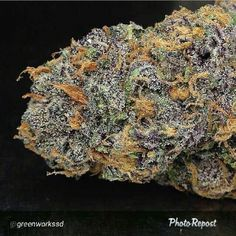 Purple Urkle - my fav Indica strain