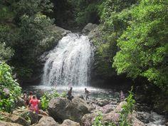 blue mountains water falls, jamaica