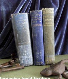 Pretty Old Books  Turquoise Tepid Teadrop