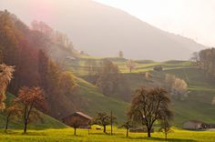 Everything looks like a postcard. | 20 Reasons You Should Drop Everything And Go To Switzerland