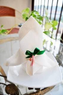 Napkin Folding: Butterfly