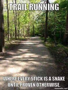 Running Humor Trail running. Where every stick is a snake until proven otherwise.You can find Running . Running Humor, Gym Humor, Workout Humor, Running Workouts, Fitness Humor, Workout Fitness, Bike Humor, Exercise Humor, Funny Fitness