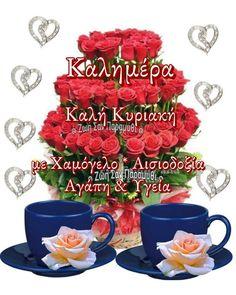 Beautiful Pink Roses, Good Morning, Birthday, Quotes, Buen Dia, Quotations, Birthdays, Bonjour, Good Morning Wishes