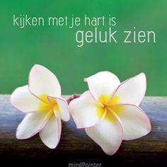 #kijken #hart #geluk
