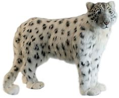 Hansa Snow Leopard Standing Plush Stuffed Animal by Hansa Plush Animals, Animals And Pets, Stuffed Animals, African Jungle Animals, Disney Cars Toys, Soft Toys Making, Mermaid Wallpapers, Funny Cute Cats, Snow Leopard
