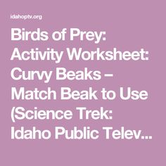 Fun elemental mystery activity element periodic table atom jr high birds of prey activity worksheet curvy beaks match beak to use science urtaz Images