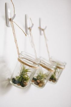DIY Hanging Mason Jar Planter with Air Plants - This looks easy to do AND it requires no fancy wall treatments! Hanging Air Plants, Diy Hanging Planter, Hanging Mason Jars, Indoor Plants, Indoor Herbs, Hanging Gardens, Indoor Gardening, Cactus E Suculentas, Mason Jar Planter