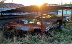 They Are Still Out There - http://barnfinds.com/erics-sightings/