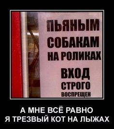 Демотиваторы Smart Humor, Hello Memes, Russian Humor, Clever Quotes, Quality Memes, Life Memes, Funny Comics, Funny Jokes, Laughter