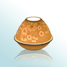 Bernardaud - Luciole Cosmos -  #bernardaud #porcelaine #porcelain #tableware #tablesetting #tablescape