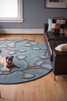 Angela Adams Nasturtium Area Rug Available At Avalon Flooring Vinyl Commercial
