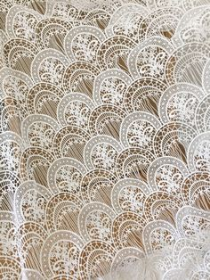 Items similar to White Curves Embroidered Flower Lace Fabric Hollowed Guipure Lace Fabric 51 inches for Bridal Dress, Bodices, Shorts, Craft Making on Etsy White Lace Fabric, Bridal Lace Fabric, Embroidered Lace Fabric, White Embroidery, Lace Applique, Floral Lace, Border Embroidery Designs, Textiles, Floral Supplies