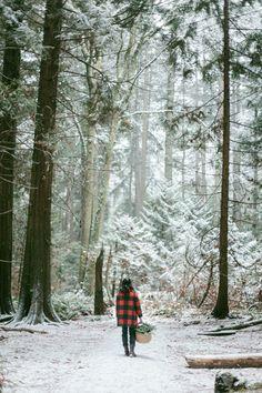 Winter Foraging | Kinfolk  Gillian Stevens Photography