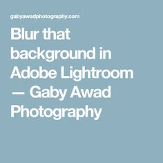 Blur that background in Adobe Lightroom — Gaby Awad Photography