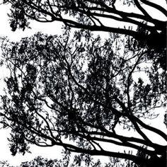 Marimekko tuuli farbric, black by Maija Isola