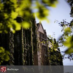 #UChicago -How do you make a great first impression?  #Job #VideoResume #VideoCV #jobs #jobseekers #careerservices #career #students #fraternity #sorority #travel #application #HumanResources #HRManager #vets #Veterans #CareerSummit #studyabroad #volunteerabroad #teachabroad #TEFL #LawSchool #GradSchool #abroad #ViewYouGlobal viewyouglobal.com ViewYou.com #markethunt MarketHunt.co.uk bit.ly/viewyoupaper #HigherEd @uchicagocollege @uchicagoadmissions @uchicago