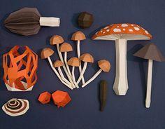 Una colección experimental de hongos de papelAn experimental collection of paper mushrooms
