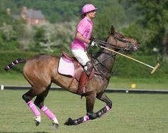 pink horse polo