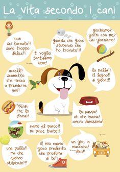 La vita secondo i cani | DogDeliver