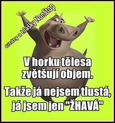 Přesně tak😂😂 Funny Memes, Jokes, I Love You, Me Quotes, Haha, Comedy, Positivity, Motivation, Photography