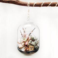Hanging Terrarium Lavender