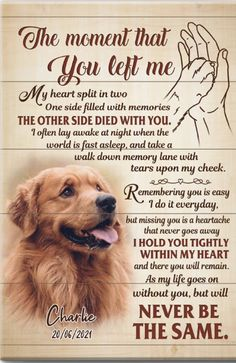 Dog Loss Quotes, Dog Quotes Love, Pet Quotes, Animal Quotes, Dog Grief, Pet Loss Grief, Loss Of Dog, I Love Dogs, Puppy Love