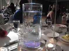 Weddings With Beta Fish | Betta Fish | wedding stuff | Pinterest ...