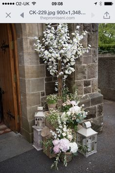 Trees and lanterns outside church from The Promise blog don't know which florist/events company to credit but good job!!