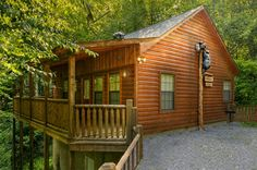 Absolutely Bearable - 1 Bedroom - The perfect choice for your honeymoon or a family vacation! Click here to see more pictures: http://www.amazingviewscabinrentals.com/cabins/absolutely-bearable/