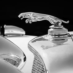 Black and White photos of hood ornaments, hood ornaments, hood ornament pictures, hood ornament photos... Re-pin brought to you by #HouseofInsurance #EugeneOregon for #Autoinsurance.