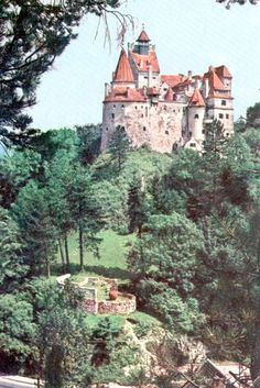 Bran Castle, Brasov, Romania.  I loved it here... all my photos were lost when my hard drive blew! :-(