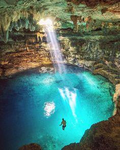 Cenote in Valladolid, Mexico - Quin Schrock