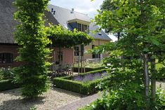 nice! Boxwood Garden, Boxwood Topiary, Lush Garden, Dream Garden, Classic Garden, Garden Deco, Green Architecture, Garden Projects, Amazing Gardens