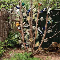 A tequila bottle tree!!! My head might just explode! I love this that much!