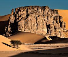 Photo by Dmitry Dubikovskiy. Photo by Dmitry Dubikovskiy. Desert Oasis, Places Around The World, Around The Worlds, Algeria Travel, Desert Biome, Desert Places, Deserts Of The World, Desert Photography, Desert Dream
