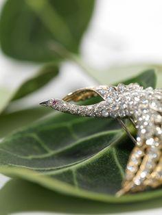 Diamantbrosche in Form eines Schwanes Auktion für Schmuck, Armband- und Taschenuhren. 14. November 2017. Wunderschönes Angebot, tiefe Startpreise! Jetzt profitieren!
