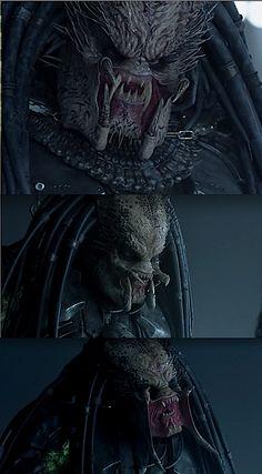 alien vs predator | Tumblr