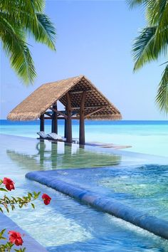 livingpursuit:  One & Only Reethi Rah Maldives | Source