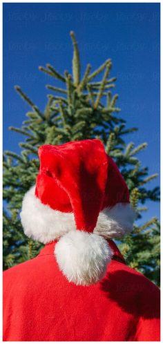 Aussie Christmas, Christmas Movies, Christmas Time, Christmas Wreaths, Christmas Ornaments, Intense Love, Merry Christmas Ya Filthy Animal, Candy Cane, Holiday Decor