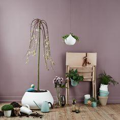home decoration #elho #love #home #decoration #pure #loft #bfor #wateringcan #indoor #elhofeeling