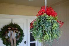 Make a Living Mistletoe Kissing Ball! - Holiday Cheer Challenge