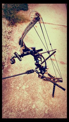 My compound bow Composite Bow, Robin, Big Deer, Military Weapons, Bow Hunting, Archery, Compound Bows, Arrows, Watercolor