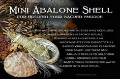 Incorporate Mini Abalone Shells into your sacred rituals.